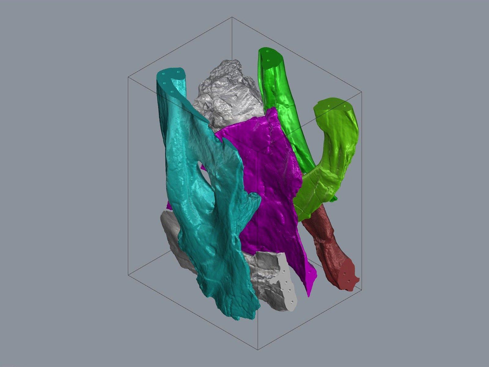 Dicht gepackt mithilfe der Mathematik: Die einzelnen Knochenteile des Schädels müssen im Bauraum des Druckers möglichst effizient angeordnet sein, da ein Druck mehr als 30 Stunden dauert.