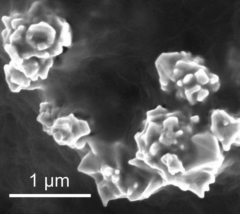 Mit Graphen überzogene Nanopartikel:Die Forscher bauten eine spezielle Polymer-Folie in die Kathode einer Lithium-Ionen-Batterie ein. In die Folie integrierten die Forscher winzige Partikel auf Nickelbasis, die an ihren Außenrändern über noch winzigere Spitzen in Nanogröße verfügen. Zuletzt wurden die Nickel-Partikel inklusive der Zacken mit Graphen überzogen.