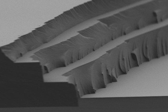 Die neue Solarfolie besteht aus drei Schichten und ist weniger als ein Millimeter dünn.