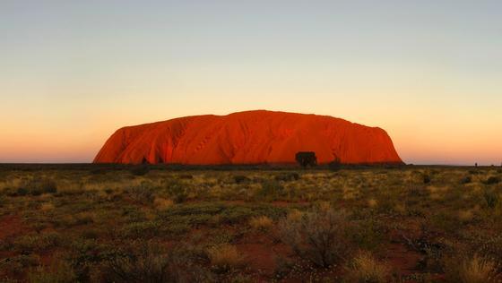 Rund um Australiens Wahrzeichen, den roten Berg Uluru, in EnglischenAyers Rock genannt,wächst das Urgras Spinifex in großen Mengen. Jetzt haben Forscher festgestellt, dass es die Produktion noch dünnerer Latex-Materialien erlaubt.