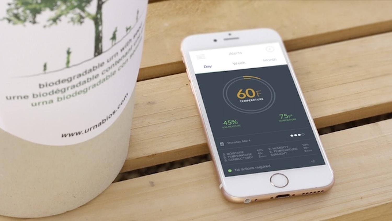 Für 350 € gibt es die Bio-Urne inklusive Smartphone-App auf Kickstarter.