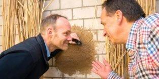 Statt Styropor: Häuser dämmen mit Schilfgras im Putz