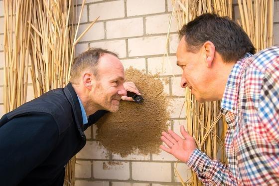 Nehmen den neuartigen Dämmputz aus Miscanthus-Partikeln in Augenschein: Prof. Ralf Pude (l.) von der Universität Bonn und Michael Petry von der Firma Petry Oberflächentechnik.