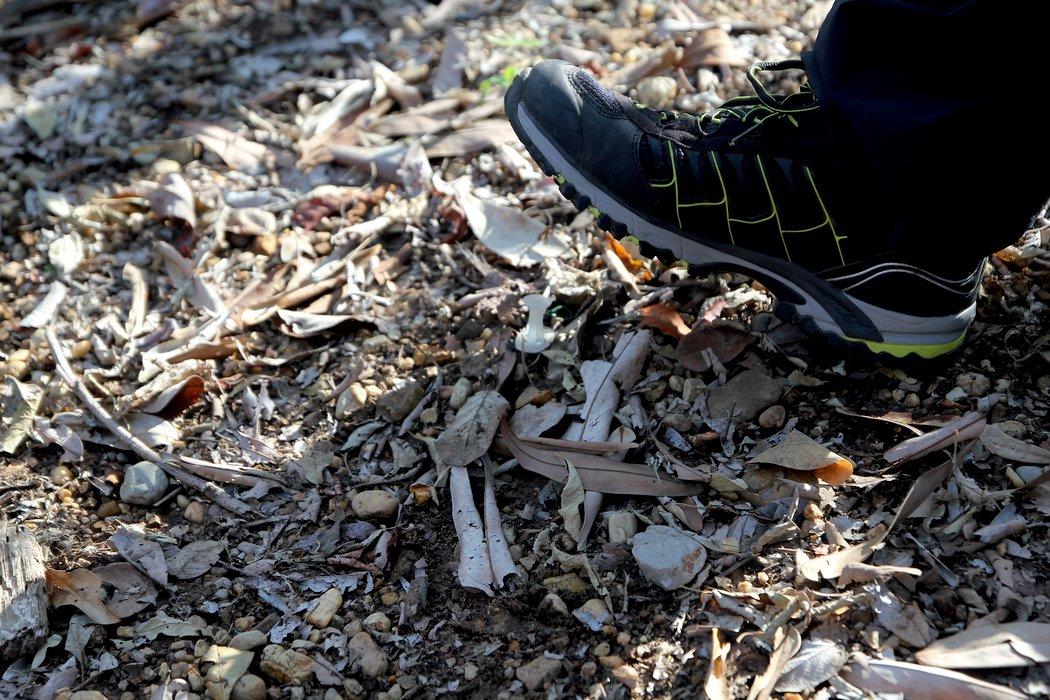 Bei einem Besuch auf einem Trainingsgelände des Militärs in Tolemaida durften die RUB-Forscher hautnah erleben, wie schwer die Minensuche im kolumbianischen Urwald ist. Für das ungeübte Auge sind die Sprengfallen kaum zu erkennen.