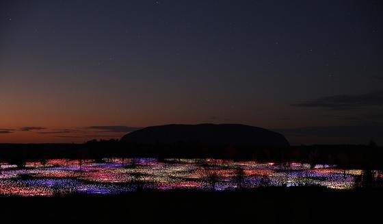 Bruce Munros jüngste Installation bringt Licht ins australische Outback.