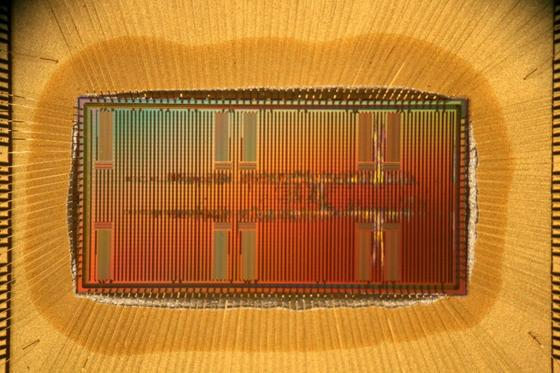 Eine Eigenentwicklung der Dresdner Forscher ist dieser Bionect-Chip, der auf die Verbindung von künstlichen Neuronen und biologischem Gewebe ausgelegt ist.