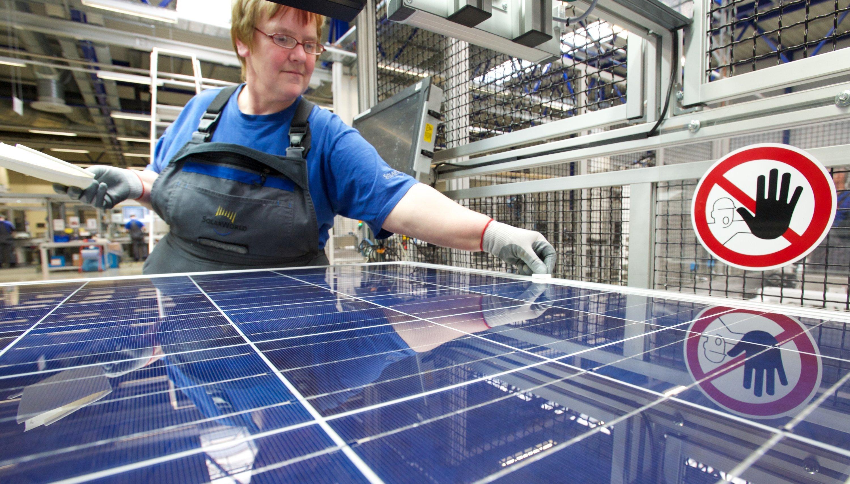 Solarzellen: Ginge es nach den Stockholmer Forschern, würden sie künftig mit durchsichtigem Holz abgedeckt. Der Vorteil: Das neue Material bricht nicht wie echtes Glas.