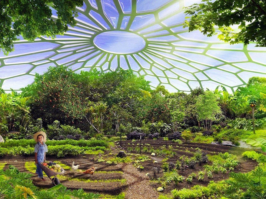 Auf den Dachflächen der Hyperion-Häuser sollen Obst und Gemüse angebaut werden.