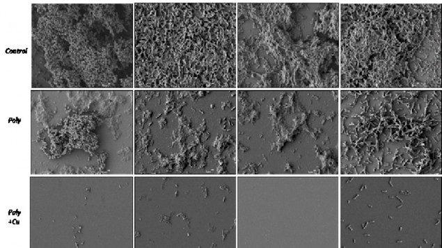 Die oberste Bildreihe zeigt den unbehandelten Biofilm auf Metallflächen. Bei der zweiten Bildreihe sind dieselben Flächen nach der rein chemischen Behandlung zu sehen und darunter die Metallflächen nach der Nano-Lackierung auf der Basis chemisch behandelten Kupfers.