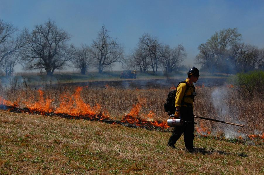Die Idee hinter der Feuerdrohne: Sie kann die Arbeit bei Brandrodungen für Menschen sicherer machen und zudem das Feuer aus der Luft überwachen.