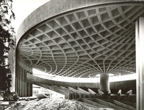 Der innere Aufbau von Knochen war Vorbild beim Bau der Decke des alten Zoologie-Hörsaals der Universität Freiburg.