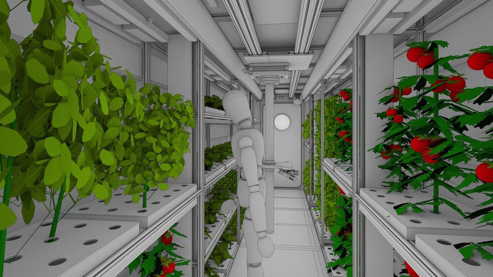 In zwei umgebauten Containern wird Ingenieur Paul Zabel in der Antarktis ein Lebenserhaltungssystem testen, in dem Gemüse für Langzeitmissionen oder Habitate auf anderen Planeten gezogen wird.
