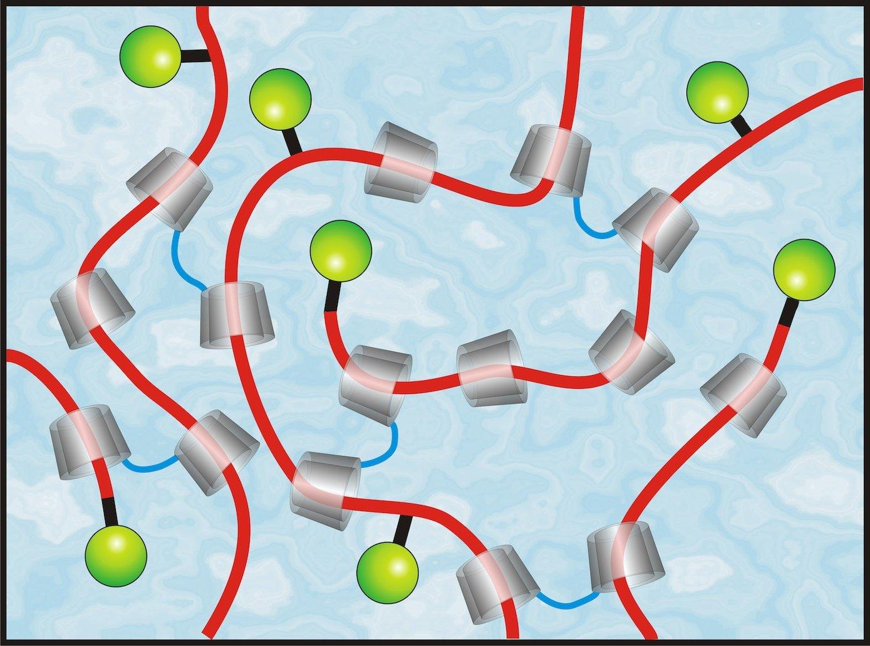 Umweltfreundliche, ringförmige Cyclodextrine aus Maisstärke (grau) bilden die Grundlage des Autolackes, der Kratzer selbst repariert.