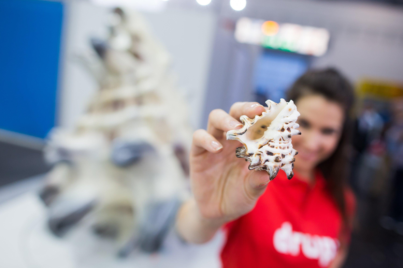 Der VDMA hat mithilfe eines Computertomographen ein 3D-Modell der Meeresschnecke drupa ricinus hergestellt. Dieses Modell nutzen Unternehmen weltweit, um Muscheln in unterschiedlicher Größe zu drucken.