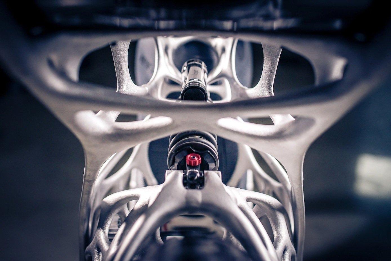Der Rahmen des Light Riders ist nach bionomischen Algorithmen berechnet worden.