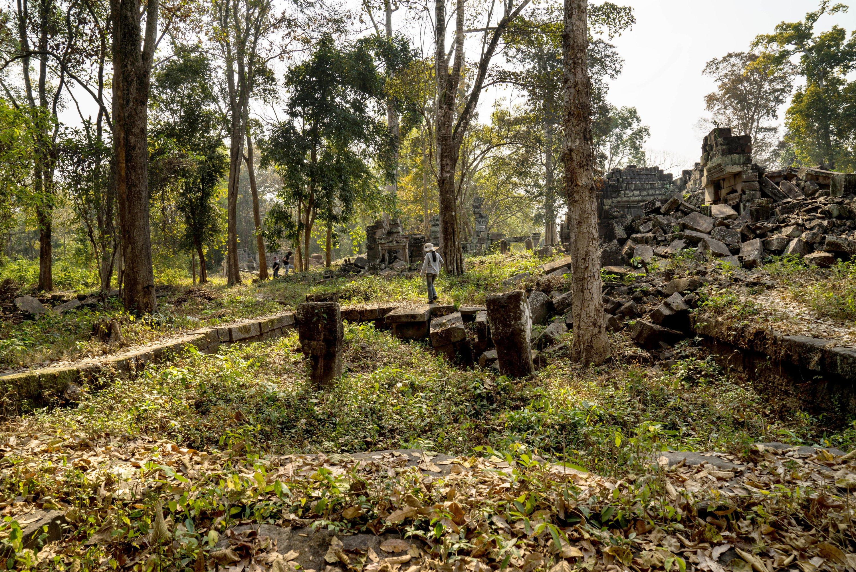 Die Ruinen der buddhitischen Tempelanlage Preah Khan von Kompong Svay in Kambodscha sind von Pflanzen und Laub verdeckt.