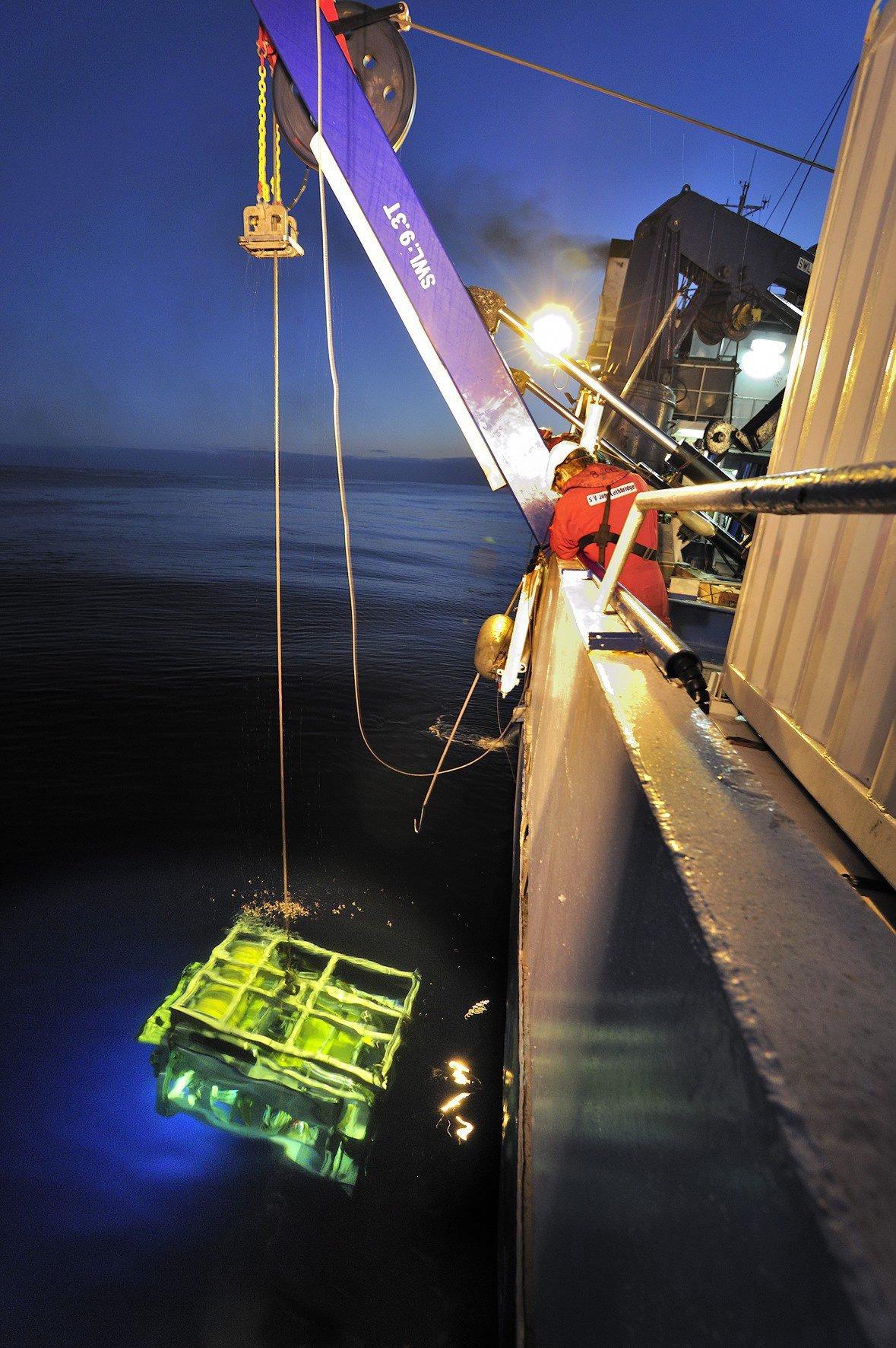 Mit einem Unterseeroboter, der über ein 10 km langes Kabel mit dem Mutterschiff verbunden ist, können die Ingenieure an Bord der