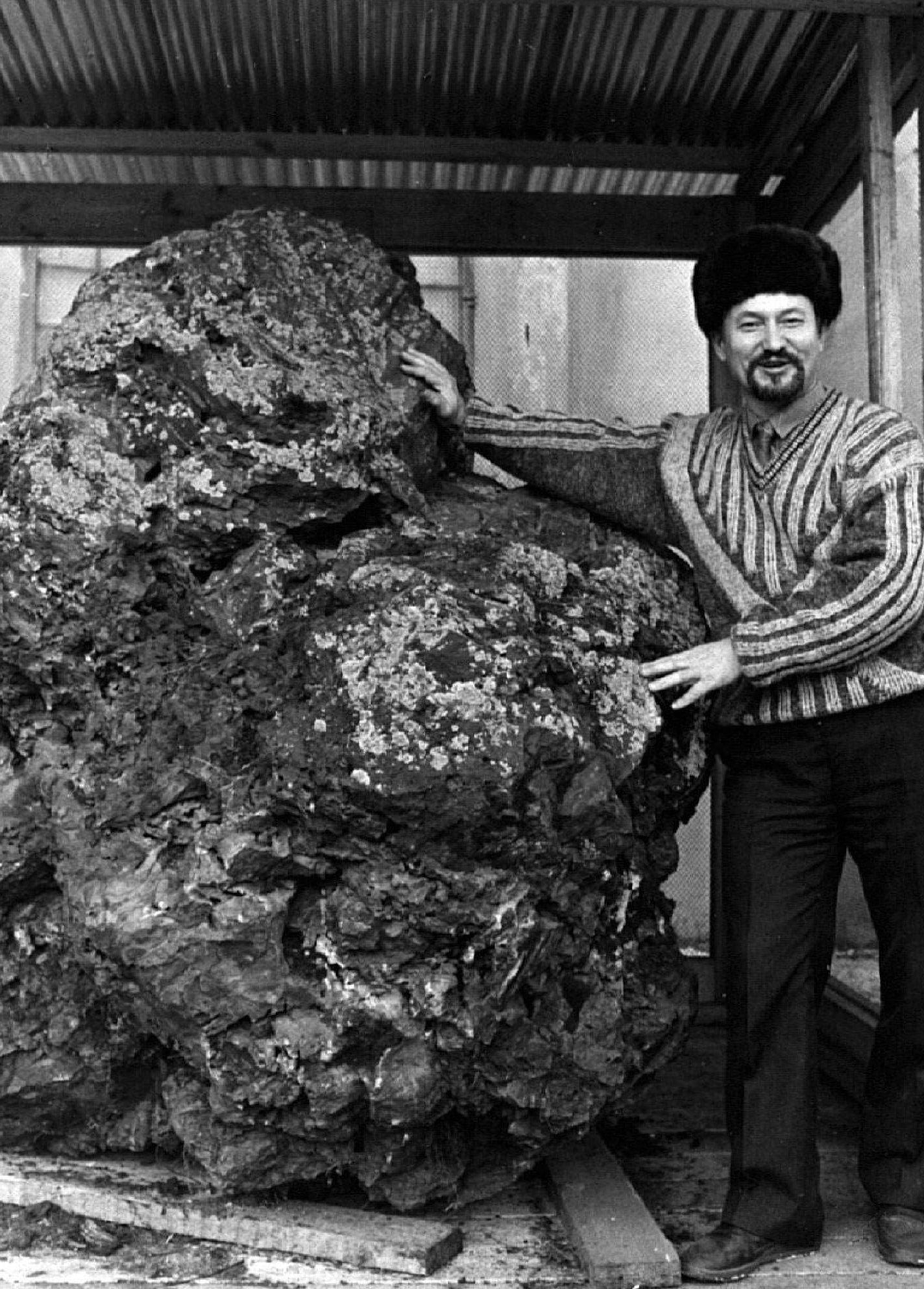 Ein Mann steht im sibirischen Krasnojarsk neben einem Gesteinsbrocken (undatierte Aufnahme). Der drei Tonnen schwere Brocken soll angeblich ein Teil des Meteoriten sein, der im Jahre 1908 über dem Fluss Steinige Tunguska niedergegangen war. Die Explosion über der unbesiedelten Waldregion, von der es keine Augenzeugen gibt, setzte nach heutigem Wissen die Sprengkraft von bis zu 1000 Hiroshima-Bomben frei.