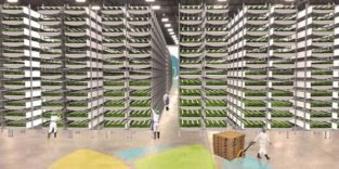 Newark: Ein Hochhaus für den Gemüseanbau