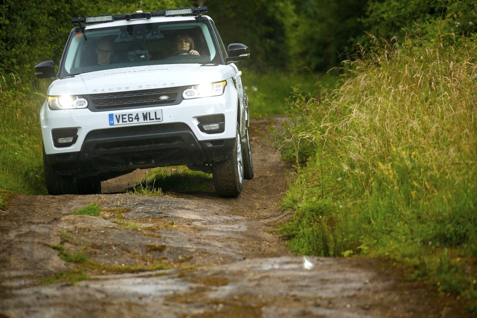 Eine Stereokamera überwacht den Luftraum über dem Range Rover. So wird der Fahrer gewarnt, wenn ein Ast zu tief hängt.