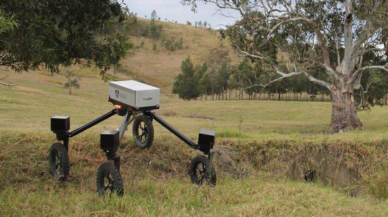 SwagBot auf einer australischen Farm in der Nähe von Newcastle. Der Roboter soll für rund 20.000 € auf den Markt kommen.