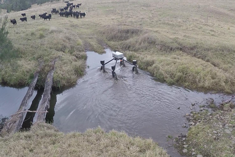 Unebenes Gelände ist für SwagBot kein Problem. Die Beine des Roboters sind voneinander unabhängig beweglich. Er kann sogar durch Schlamm und Wasser fahren.