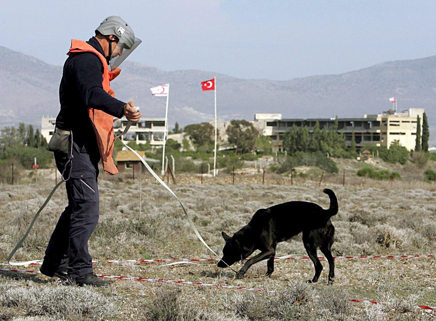 Gefährlich: Mensch und Hund auf der Suche nach versteckten Landminen.