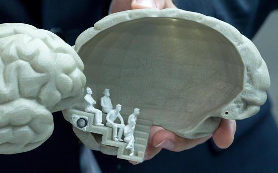 """Aufklappbares Modell eines """"Begehbaren Gehirns"""":Das Senckenberg-Museum in Frankfurt am Main will das Gehirn künftig (Konzept Sneckenberg 2020) als riesige, raumgreifende Installation präsentieren. Schon fertig ist der neue Gehirn-Atlas."""