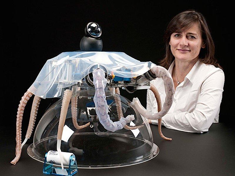 Cecilia Laschi und einer ihrer Oktopus-Roboter.
