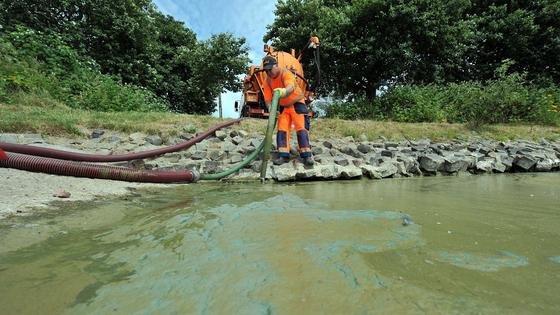 Zu spät: An diesem See hatten sich giftige Blaualgen schon so weit verbreitet, dass sie abgesaugt werden mussten – und im See nicht gebadet werden durfte.