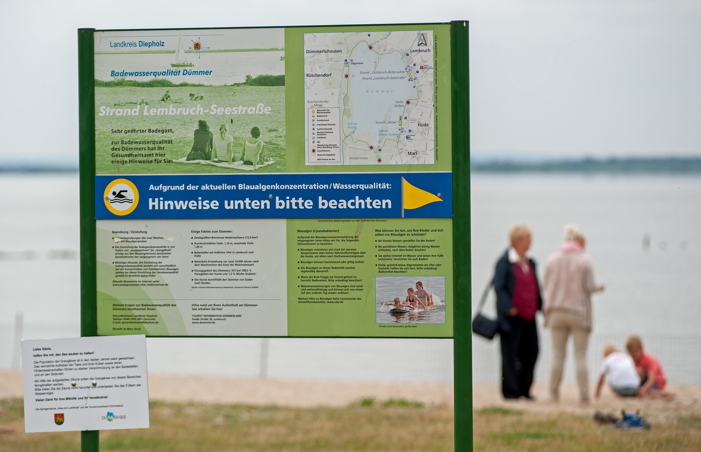 Wegen Blaualgen am Dümmer See durfte dort im Juni 2016 vorübergehend nicht gebadet werden: KIT-Forscher entwickeln jetzt gemeinsam mit Partnern aus der Industrie ein Überwachungssystem, das die Güte von Gewässern pausenlos überwacht.