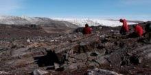 Älter als gedacht: Leben auf der Erde schon vor 3,7 Mrd. Jahren
