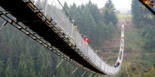 Die längste Hängeseilbrücke Deutschlands