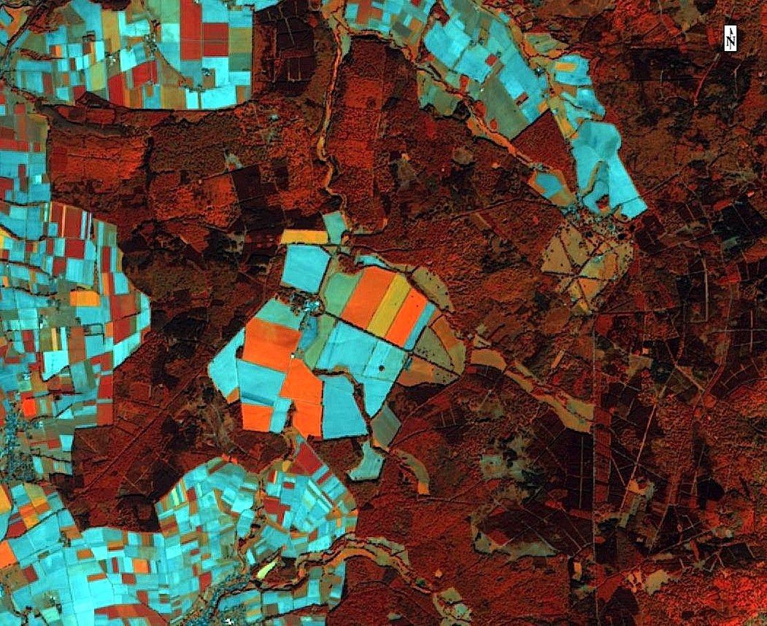 Mit solchen Aufnahmen aus dem All sollen Landwirte künftig ihre Äcker besser bestellen können. Diese falschfarbene Infrarotversion zeigt unterschiedliche Waldtypen wie Nadelwald in dunkelrot und Laubwald in hellrot. Orangefarbene Flächen zeigen Zuckerrüben und Zwischenfrüchte an, bläulichen Flächen sind offener Boden nach der Bestellung.