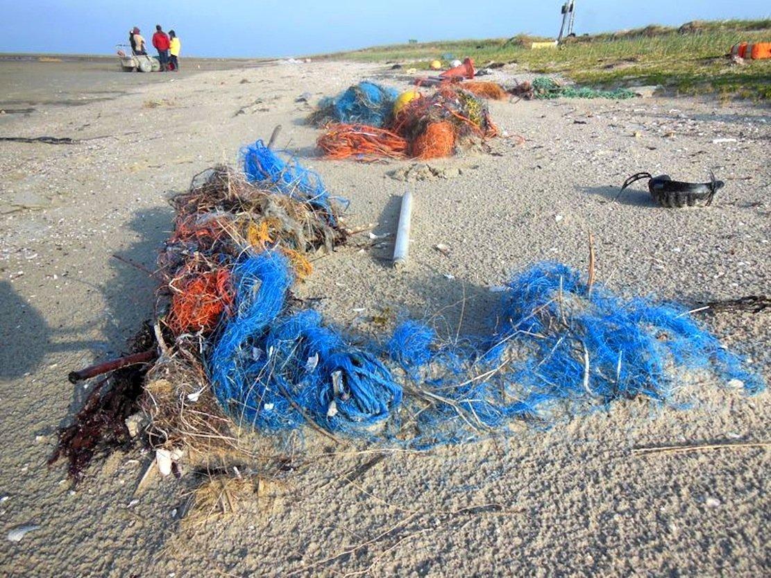 Netze, Plastiktüten und Becher: 300 Millionen Tonnen Plastik landen in den Weltmeeren. Jedes Jahr. Forscher der Universität Oldenburg wollen der Verschmutzung entgegensteuern.