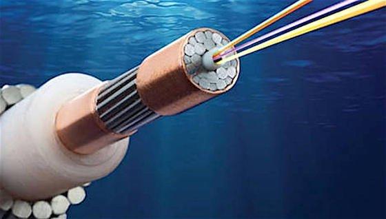 Die künftige Unterwasser-Datenautobahn mit dem Namen Pacific Light Cable Network (PLCN) verläuft auf 12.800 Kilometern zwischen Hongkong und Los Angeles.