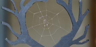 Künstliche Spinnenseide genauso belastbar wie natürliches Vorbild