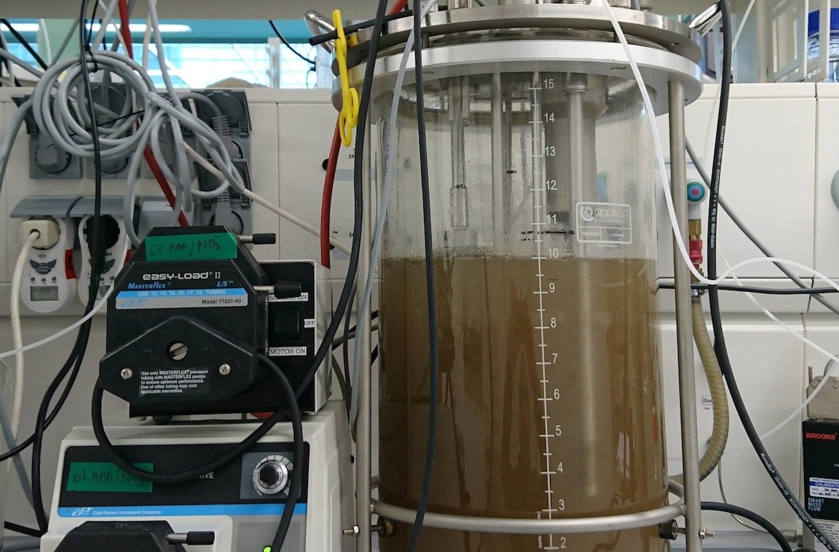 In dieser Laborprobe aus dem Twentekanal in den Niederlanden fanden Forscher jetzt die Mikrobe, die Methan in CO2 umwandeln kann.