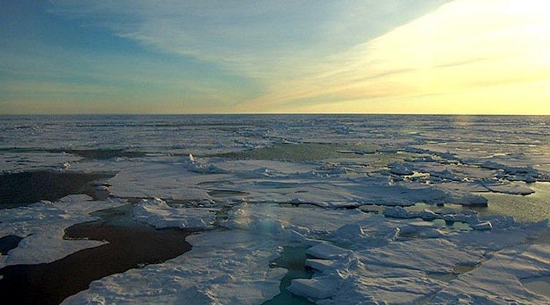Der Klimawandel hat zur Folge, dass das Meereis immer dünner und löchriger wird – bis es schmilzt.