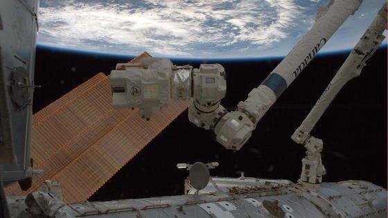 Canadarm: Der Roboterarm an der ISS ist fast 17 Meter lang und ist mit sieben Gelenken versehen.