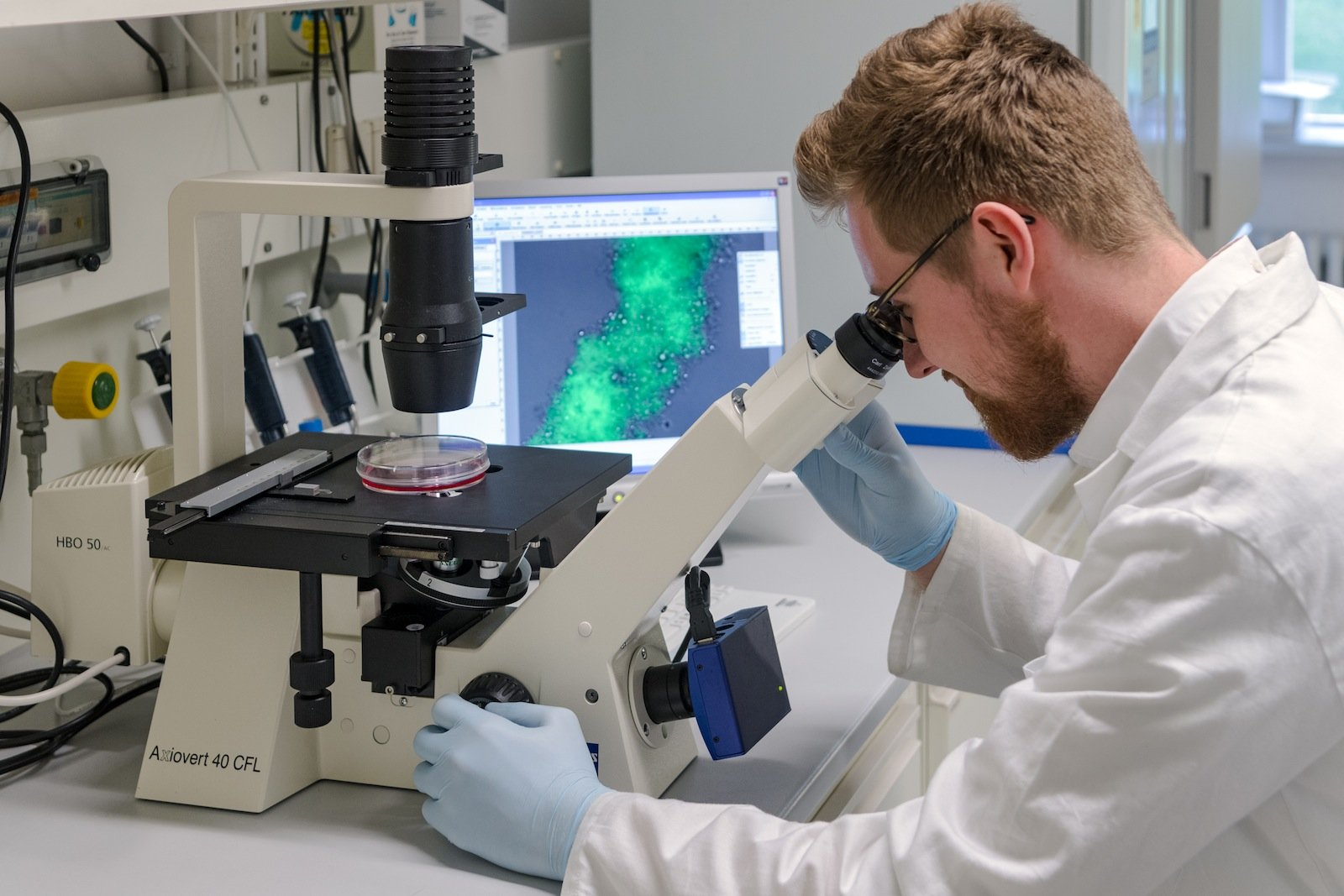 Clemens Ries betrachtet erfolgreiche Polymerisationsexperimente unter dem Fluoreszenzmikroskop.