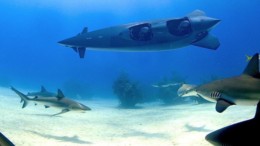 Das verspricht Abenteuer: Der niederländische Hersteller Ortega hat Tauchboote entwickelt, mit denen auch Privatleute unter Wasser auf Forschungsreise gehen können.