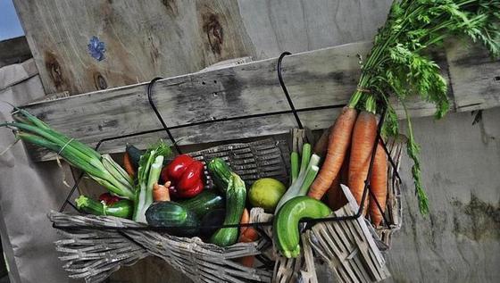 Krumme Möhren und Zucchini: Der Verein ShoutOutLoud will künftig in einem eigenem Foodtruck aus solchen Zutaten gesunde, schmackhafte Speisen kochen.