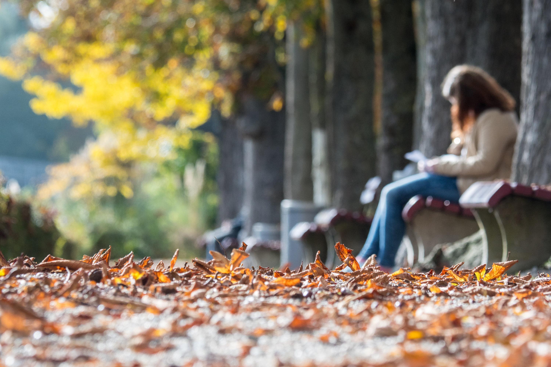Sonnenbad im Herbst: Besonders in der dunklen Jahreszeit sollte man sich viel Licht gönnen. Das hält die Laune hoch, auch im Job.
