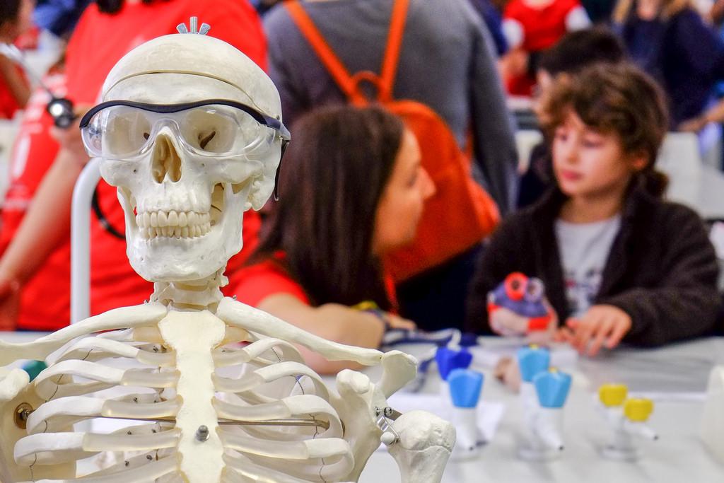 Science Festival an der Universität in Cambridge: Beim Brainstorming in der Gruppe sind ungewöhnliche Ideen gefragt – und Kritik ist absolut verpönt.