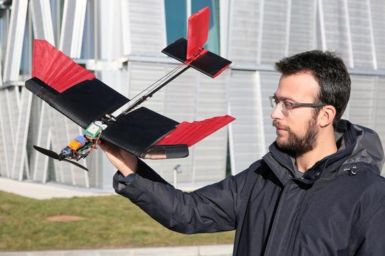 Drohne mit Federn: Dieses Fluggerät besitztzwei Flügel mit Schwungfeder-Spitzen an der Seite, ein schmales Mittelstück und ein schwanzfederartiges Höhenruder am Ende. Anstelle eines Kopfes hat die Drohne einen Propeller, der das ganze Gerät antreibt.