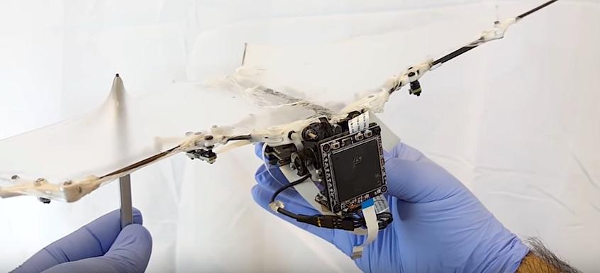 Die Flügelhaut aus Silikon ist nur 56 Mikrometer dünn.