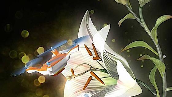 Japanische Forscher haben einen Quadcopter entwickelt, der Blumen bestäuben kann.