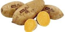 Etiketten direkt in die Schale von Kartoffeln und Avocados lasern