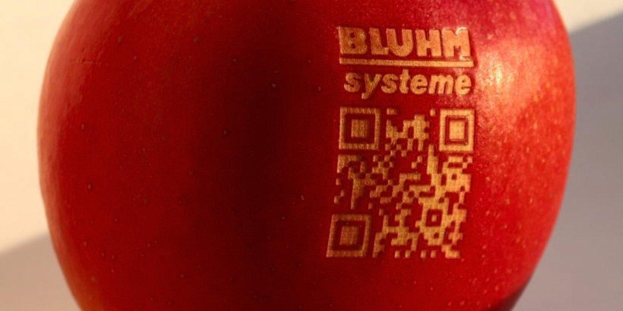 Ein Apfel mit Lasercode und QR-Code des Maschinenbauers Bluhm.